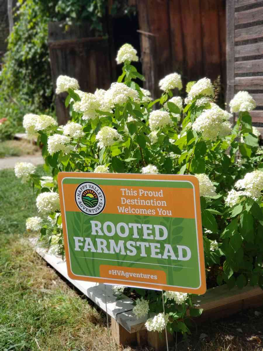 rooted farmstead sign